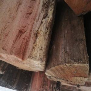 Firewood: Bluegum Large Bag (+- 23kg)